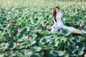 Cánh đồng sen Charaih – địa chỉ check in đẹp không tưởng tại Ninh Thuận