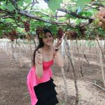 Hành trình check in miễn phí với vườn nho xanh mát, trĩu quả tại Làng Nho Ninh Thuận